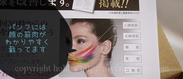 顔の筋肉の説明