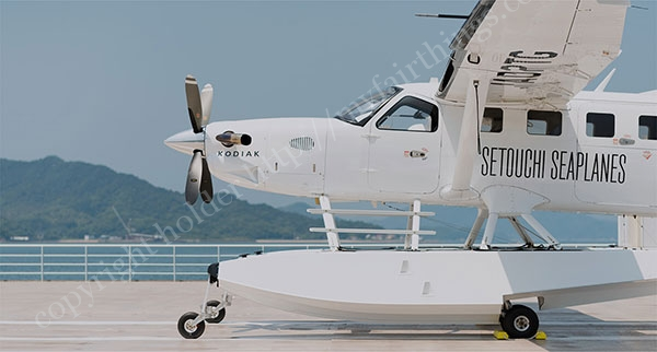 Kodiak100の機体