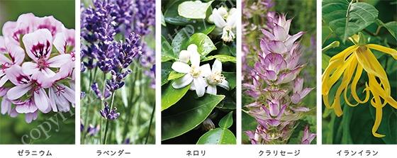 自然な香り