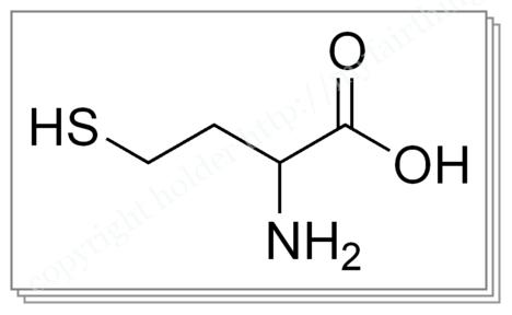 ホモシステイン化学式