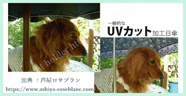 UVカット率比較・犬がモデル